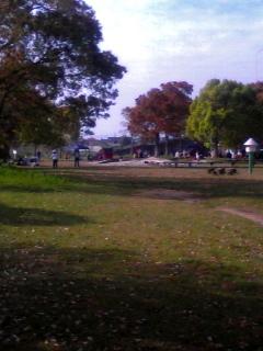 公園でのワンシーン