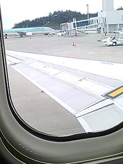 静岡→新千歳